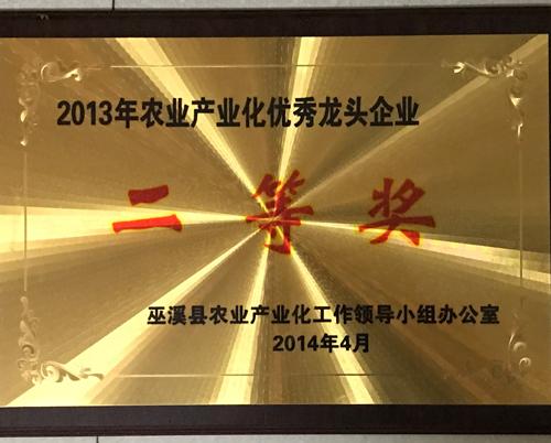 2013年农业产业优秀龙头企业