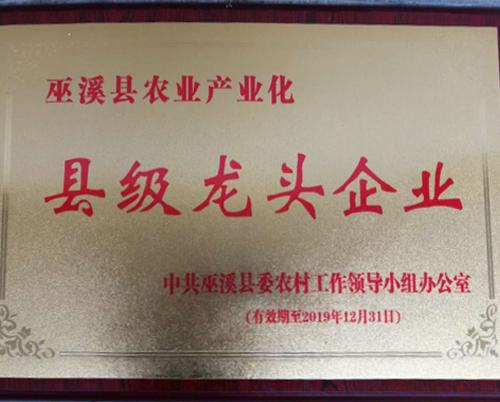 巫溪县农业产业化县级龙头企业