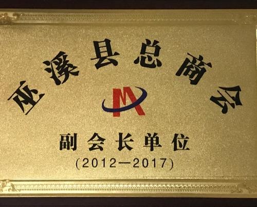 巫溪县总商会副会长单位