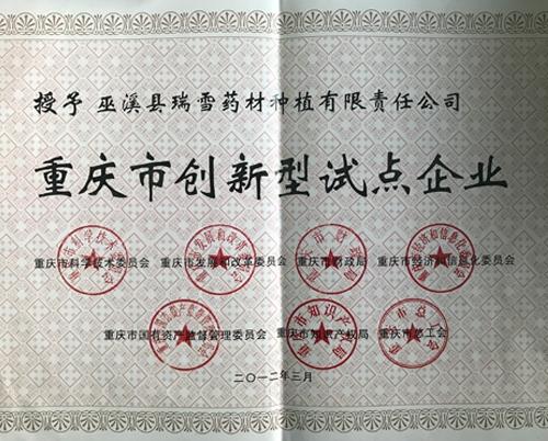 重庆市创新型试点企业1