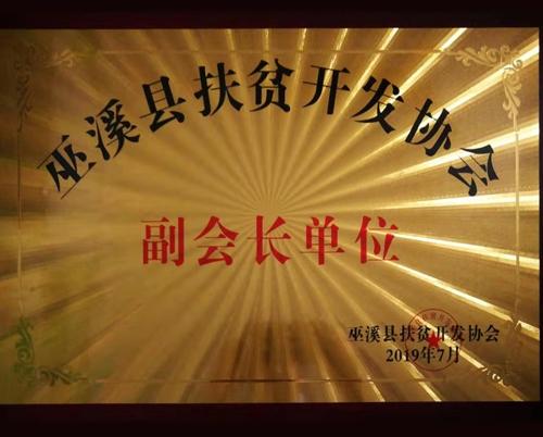 巫溪县扶贫开发协会副会长单位